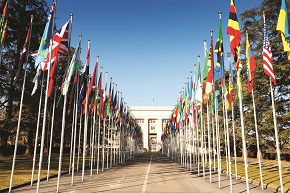 Baptists at the United Nations: A reflection on attending the Sixth Forum on Religious MinorityRights