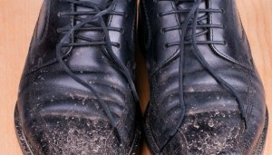 shoes-greg