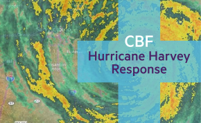 CBF Harvey response: 5 things you and your church cando