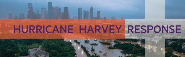 HarveyHeader