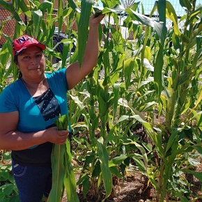 With, Not For—CBF field personnel partners with organizations to empower, engage and uplift Florida farmworkers