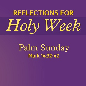 Reflections for Holy Week – Palm Sunday