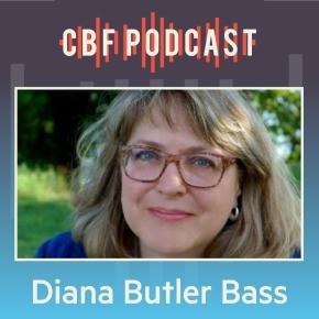 Diana Butler Bass, FreeingJesus